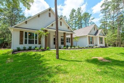 Waller Single Family Home For Sale: 30200 E Stallion Lane