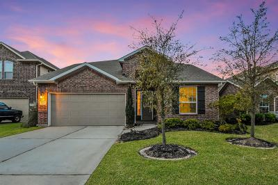 Tomball Single Family Home For Sale: 13030 Thorn Valley Court