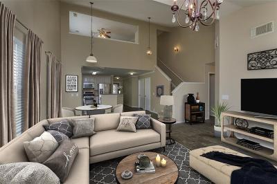 Single Family Home For Sale: 17123 Shadow Ledge Drive