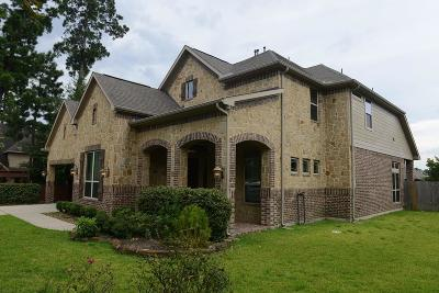 Conroe Single Family Home For Sale: 2416 Ellis Park Lane
