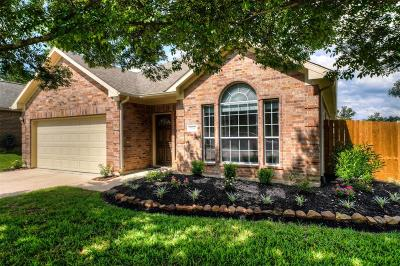 Conroe Single Family Home For Sale: 2041 Borthwick Lane