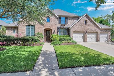 Katy Single Family Home For Sale: 8518 Iron Tree Lane