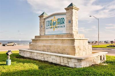 Galveston Condo/Townhouse For Sale: 6102 Seawall Boulevard #319