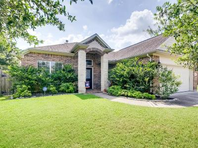 Pearland Single Family Home For Sale: 2805 Pedernales Falls Drive