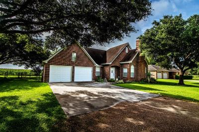 Austin County Single Family Home For Sale: 514 Lakeview Drive