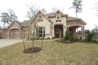 Conroe Single Family Home For Sale: 14027 S Evergreen Ridge Court