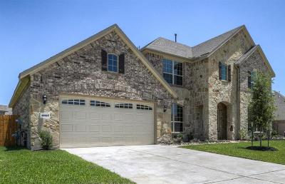 Katy Single Family Home For Sale: 28127 Middlewater View Lane