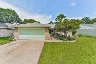 Sugar Land Single Family Home For Sale: 16807 Rippling Mill Drive