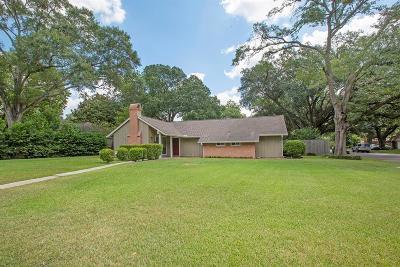 Houston Single Family Home For Sale: 1238 Demaret Lane