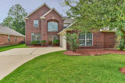 Tomball Single Family Home For Sale: 9907 Memorial Crossing Drive
