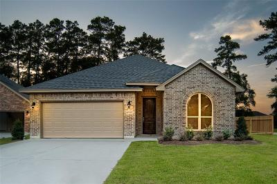 Single Family Home For Sale: 9939 S Hummingbird Court