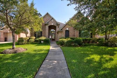 Manvel Single Family Home For Sale: 3522 Silvercreek Drive