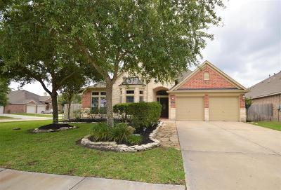 League City Single Family Home For Sale: 6103 Castle Peak Lane