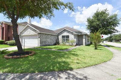 Galveston County, Harris County Single Family Home For Sale: 11643 Garden View Drive