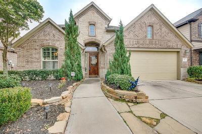 Houston Single Family Home For Sale: 9119 Durango Point Lane