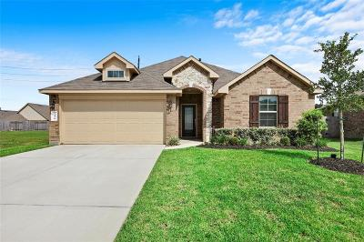 Spring Single Family Home For Sale: 24410 Hollow Gate Meadow Court
