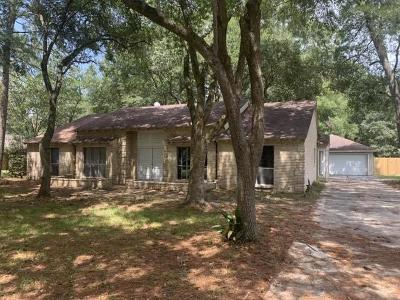 New Caney Single Family Home For Sale: 2411 Catacombs Drive