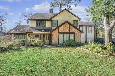Conroe Single Family Home For Sale: 800 Stone Mountain Drive