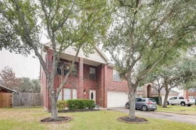 Fort Bend County Single Family Home For Sale: 2619 Pine Shadow Drive
