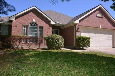 Katy Single Family Home For Sale: 20522 Arrow Field Lane