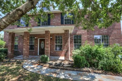 The Woodlands Single Family Home For Sale: 50 S April Mist Circle