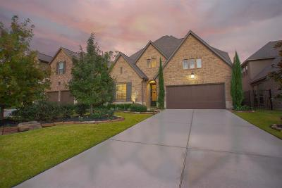 The Woodlands Single Family Home For Sale: 46 N Lochwood Way