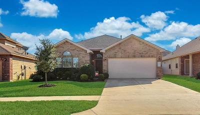 Tomball Single Family Home For Sale: 8707 Auburn Mane Drive