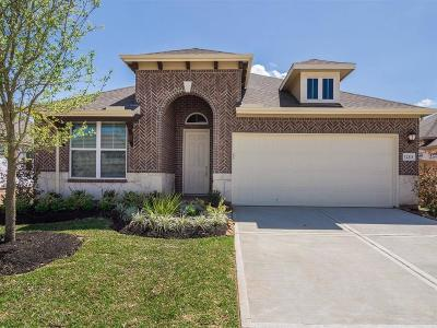 Tomball Single Family Home For Sale: 12111 Brighton Brook Lane