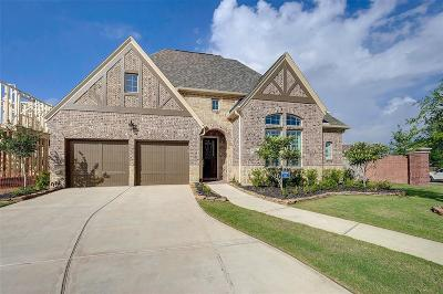 Sugar Land Single Family Home For Sale: 6119 Bargo River Court