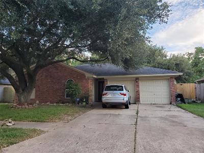 Houston Single Family Home For Sale: 8718 Kirkland Drive