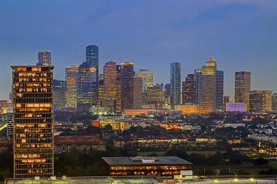Houston Mid/High-Rise For Sale: 3333 Allen Parkway #2501