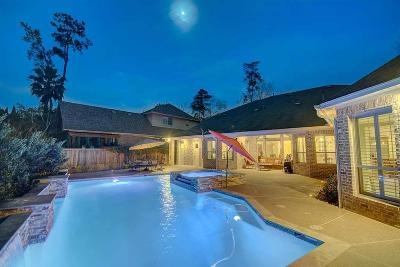 The Woodlands Single Family Home For Sale: 59 Silvermont Drive