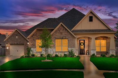 Single Family Home For Sale: 18118 Langkawi Lane