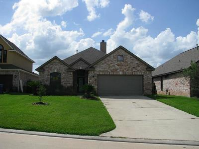 Willis Single Family Home For Sale: 13419 E Summerchase Circle