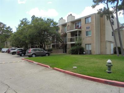 The Woodlands TX Condo/Townhouse For Sale: $113,900