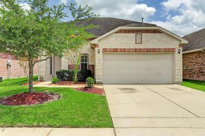 Manvel Single Family Home For Sale: 37 Supiro Drive