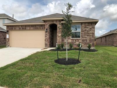 Katy Single Family Home For Sale: 6139 Purple Iris Street