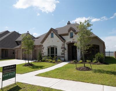 Houston Single Family Home For Sale: 8702 San Juanico Street