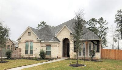 Harris County Single Family Home For Sale: 18011 Langkawi Lane