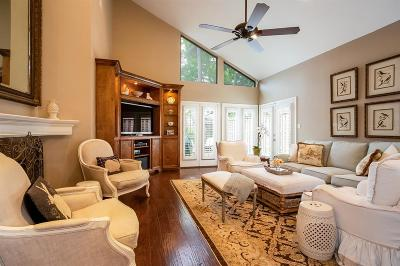 Houston Condo/Townhouse For Sale: 9031 Briar Forest Drive