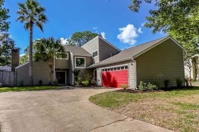 Houston Single Family Home For Sale: 2102 Shadybriar Drive