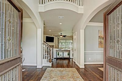 Sugar Land Single Family Home For Sale: 1323 Hillside Forest Drive