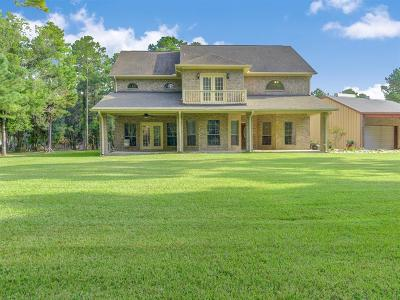 Alvin Single Family Home For Sale: 4825 County Road 197