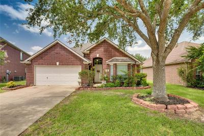Katy Single Family Home For Sale: 4807 Cottage Stone Lane