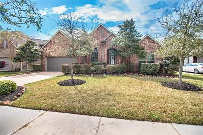 League City Single Family Home For Sale: 2133 Belcara View