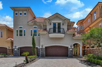 Montgomery Single Family Home For Sale: 110 La Vie Drive