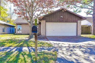 Katy Single Family Home For Sale: 21133 Northern Colony Court