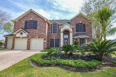 Spring Single Family Home For Sale: 30202 Vinebriar Drive