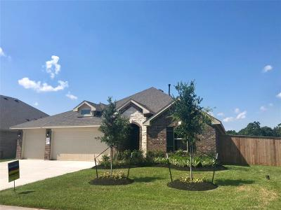 Tomball Single Family Home For Sale: 12607 Fort Isabella Drive