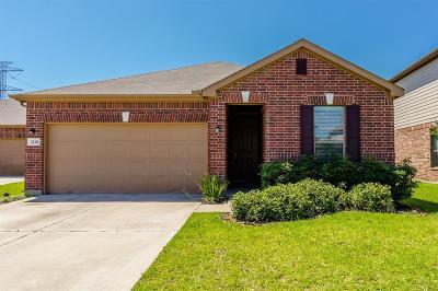 Katy Single Family Home For Sale: 22411 Auburn Valley Lane